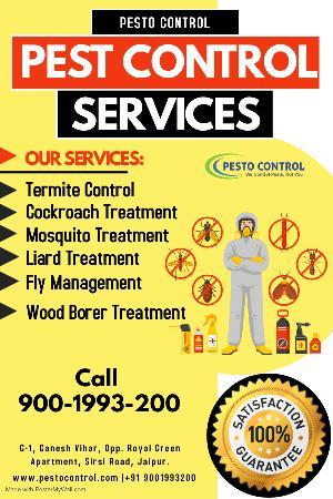Pesto_Control, Pesto Control, G-1, Ganesh Vihar, Opp. Royal Green Apartment, Sirsi Road, Jaipur. 302012, Contact:  900-1993-200, Email: Info@pestocontrol.com, Website: Https://pestocontrol.com, Jaipur, Jaipur, Traders Agency :: General
