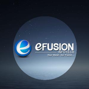 EFUSION INFOTECH, 112, Mahaveer Nagar I, Durgapura, Jaipur, Jaipur, Search Engines :: Internet