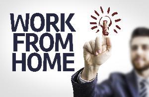 Internet Pros, S.V.Road, Mahim Koliwada, Mumbai, Maharashtra, India, Mumbai, Maharashtra, Rojgar Center :: Employer